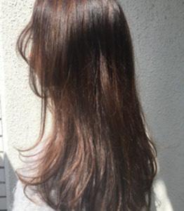 銀座の美容院Salon 髪質改善トリートメント